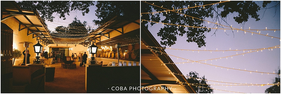 Christiaan & Adre - Diamant Estate - Coba Photography (211)