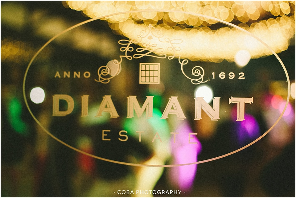 Christiaan & Adre - Diamant Estate - Coba Photography (257)