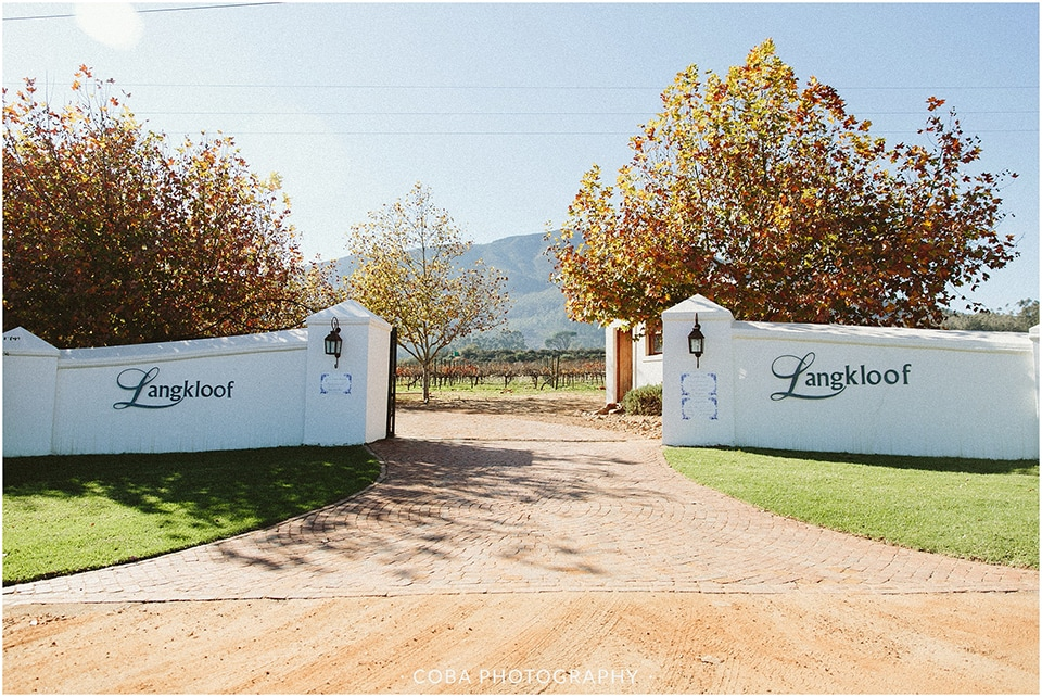 Carlo & Nicolette - Langkloof Roses - Coba Photography (1)