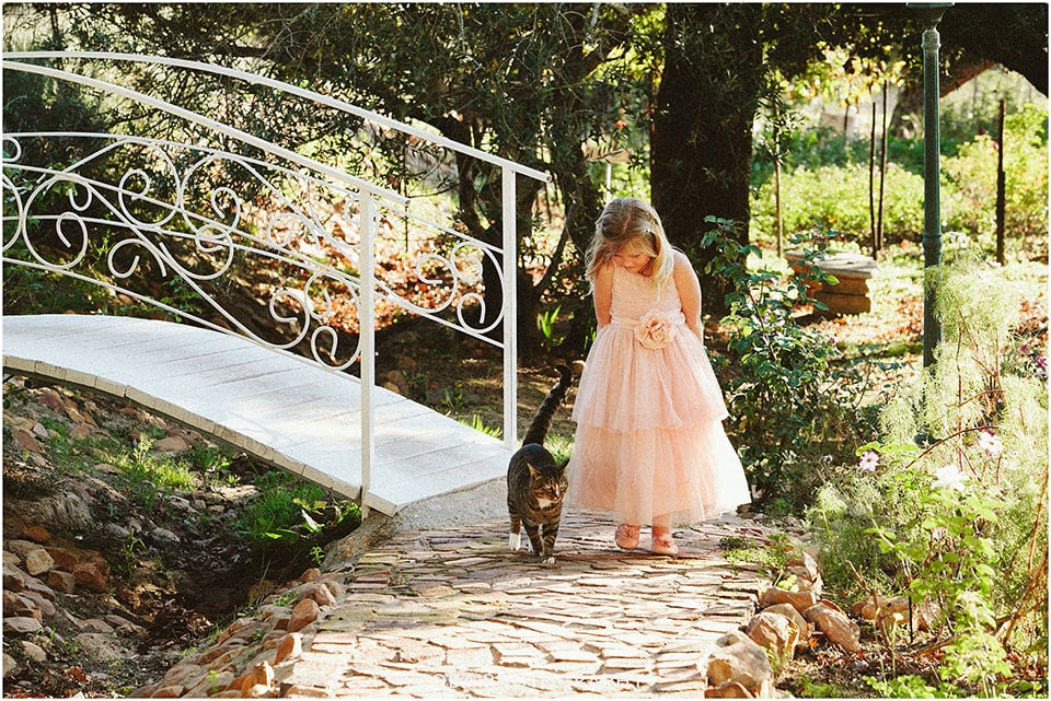 Carlo & Nicolette - Langkloof Roses - Coba Photography (238)
