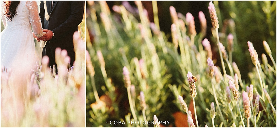 Carlo & Nicolette - Langkloof Roses - Coba Photography (240)