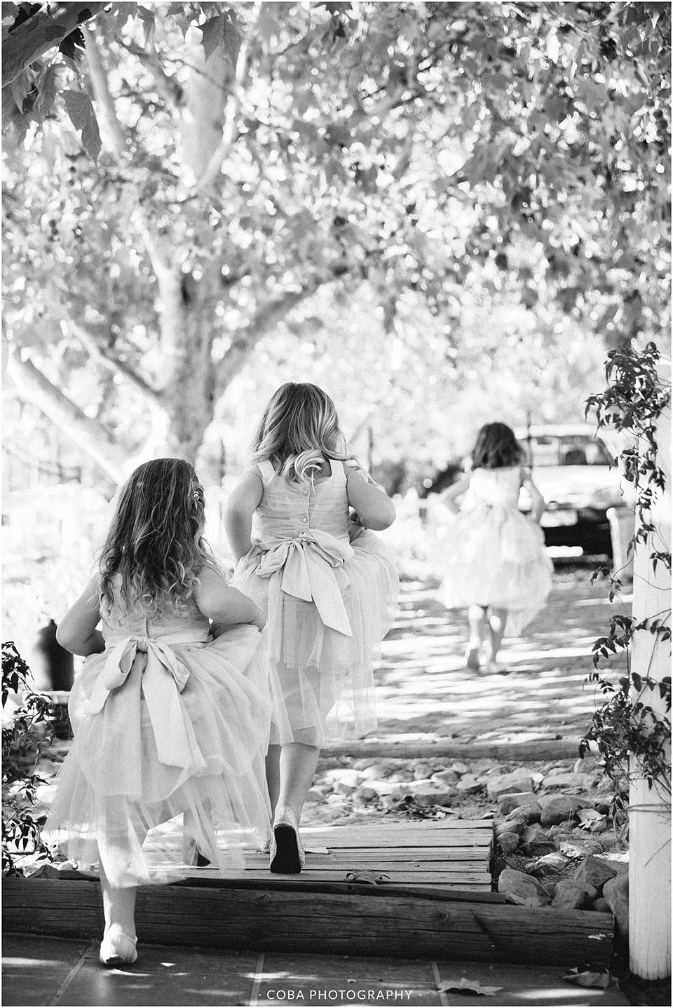 Carlo & Nicolette - Langkloof Roses - Coba Photography (61)