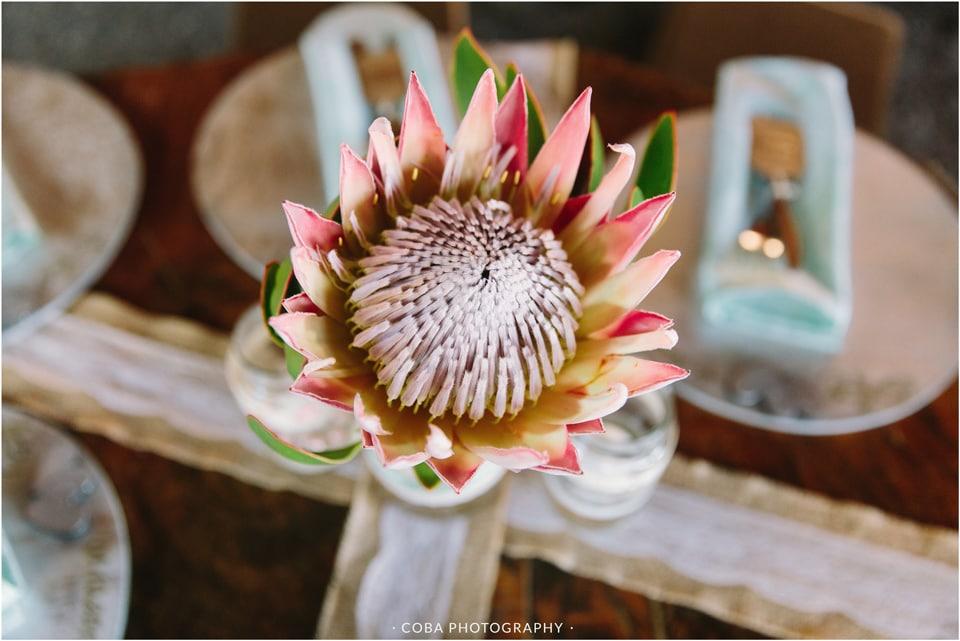 andre-carolien-bosduifklip-wedding-coba-photography-11