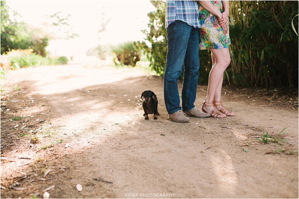 ryan-stevie-engaged-coba-photography-cape-town-21